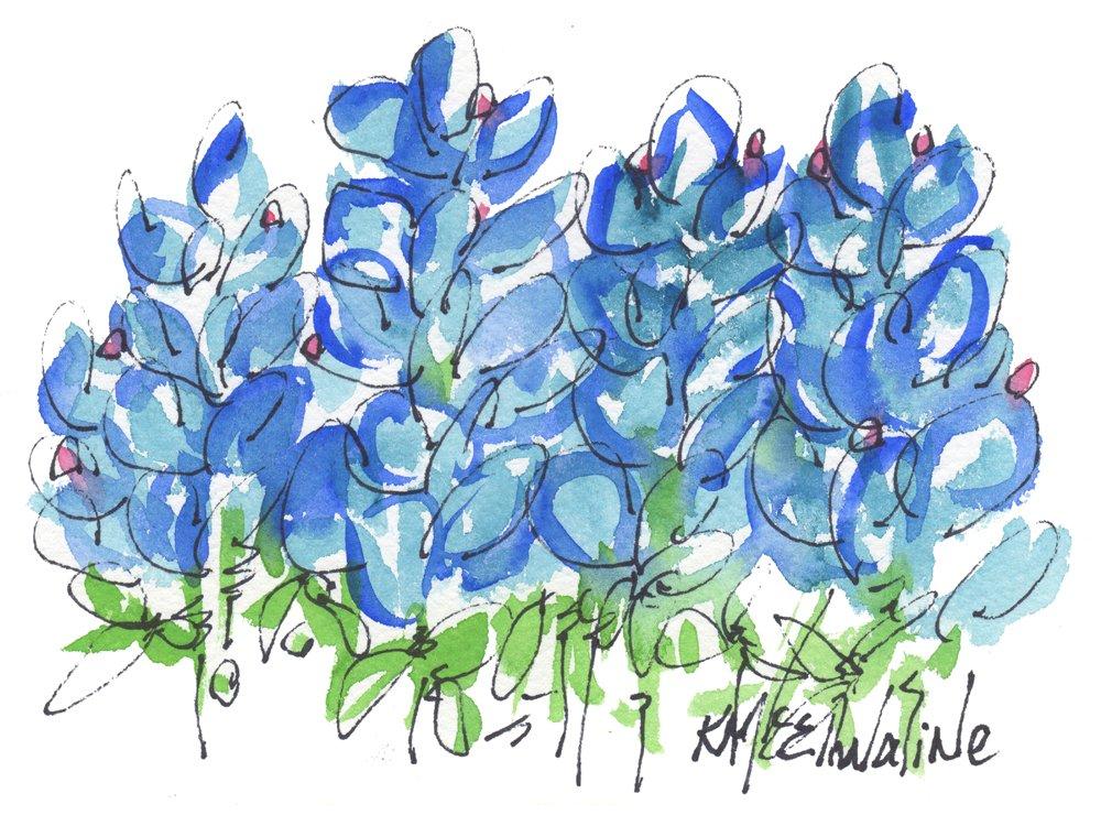 Bluebonnet Dance Fine Art Print