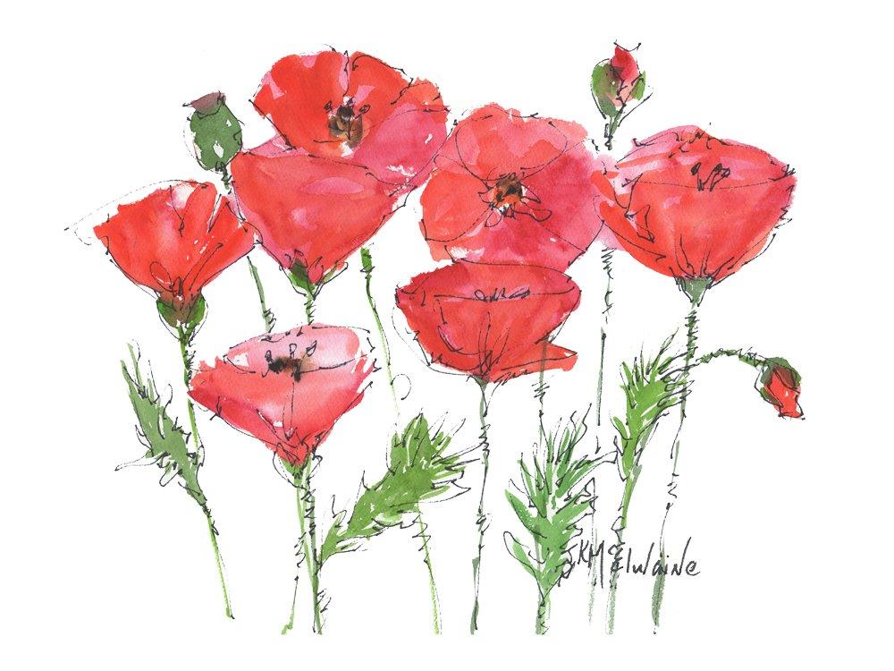 Red Poppy Garden Fine Art Print on Paper