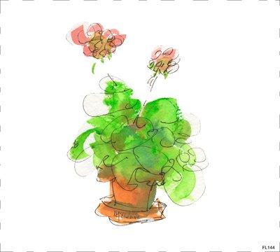 Flower Geraniums FL144