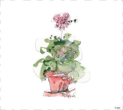 Flower Geraniums FL244