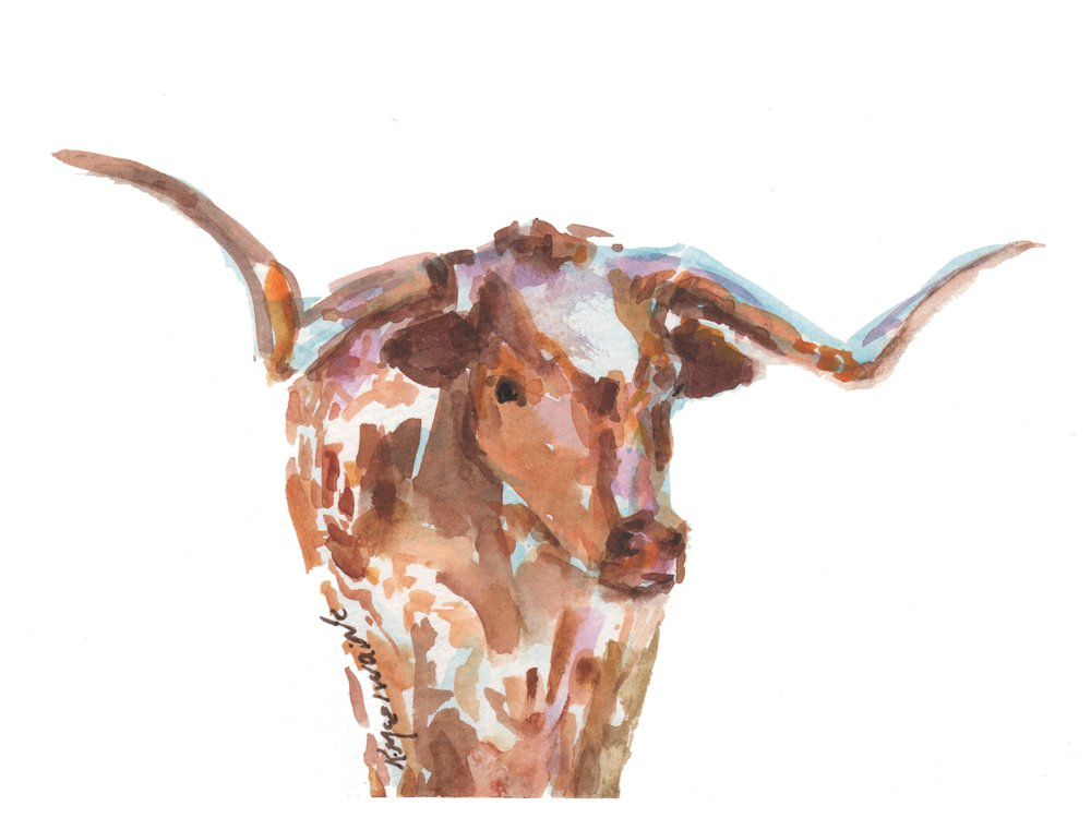 The Original Texas Longhorn Fine Art Print