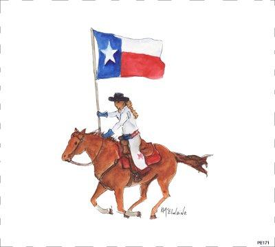 TX Flag PE171