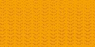 Gold Webbing - XL 325