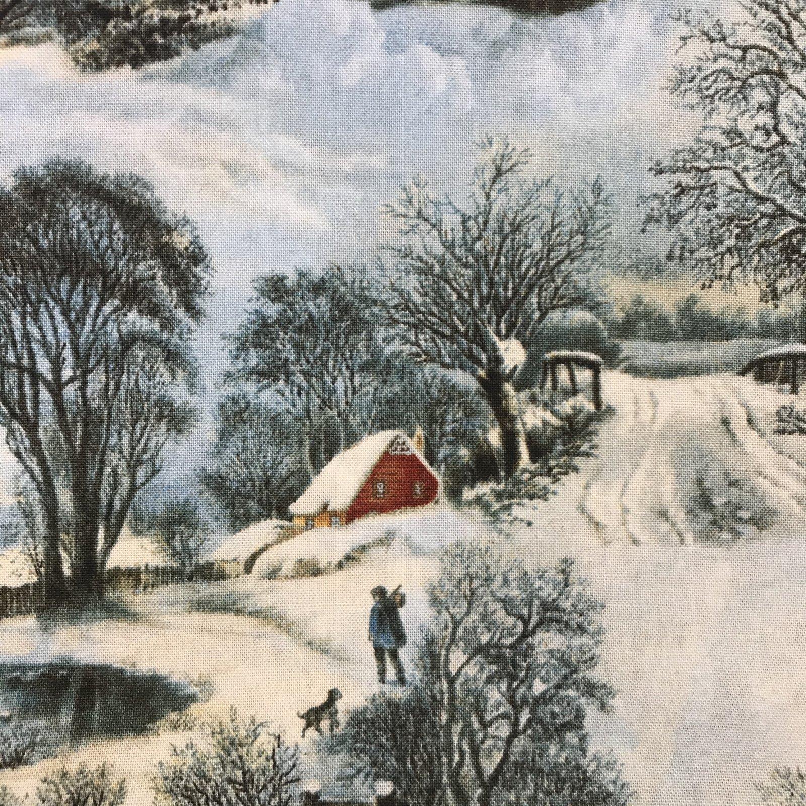 On Frozen Pond - Winter Day