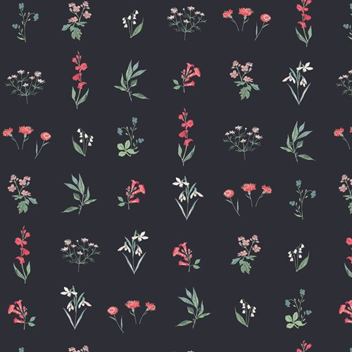 Botanical Study Dark