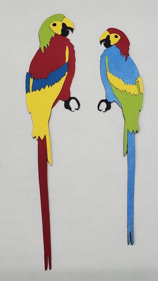 Parrot Pair Title