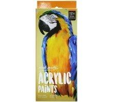 Acryliic Paints 12 Piece Set