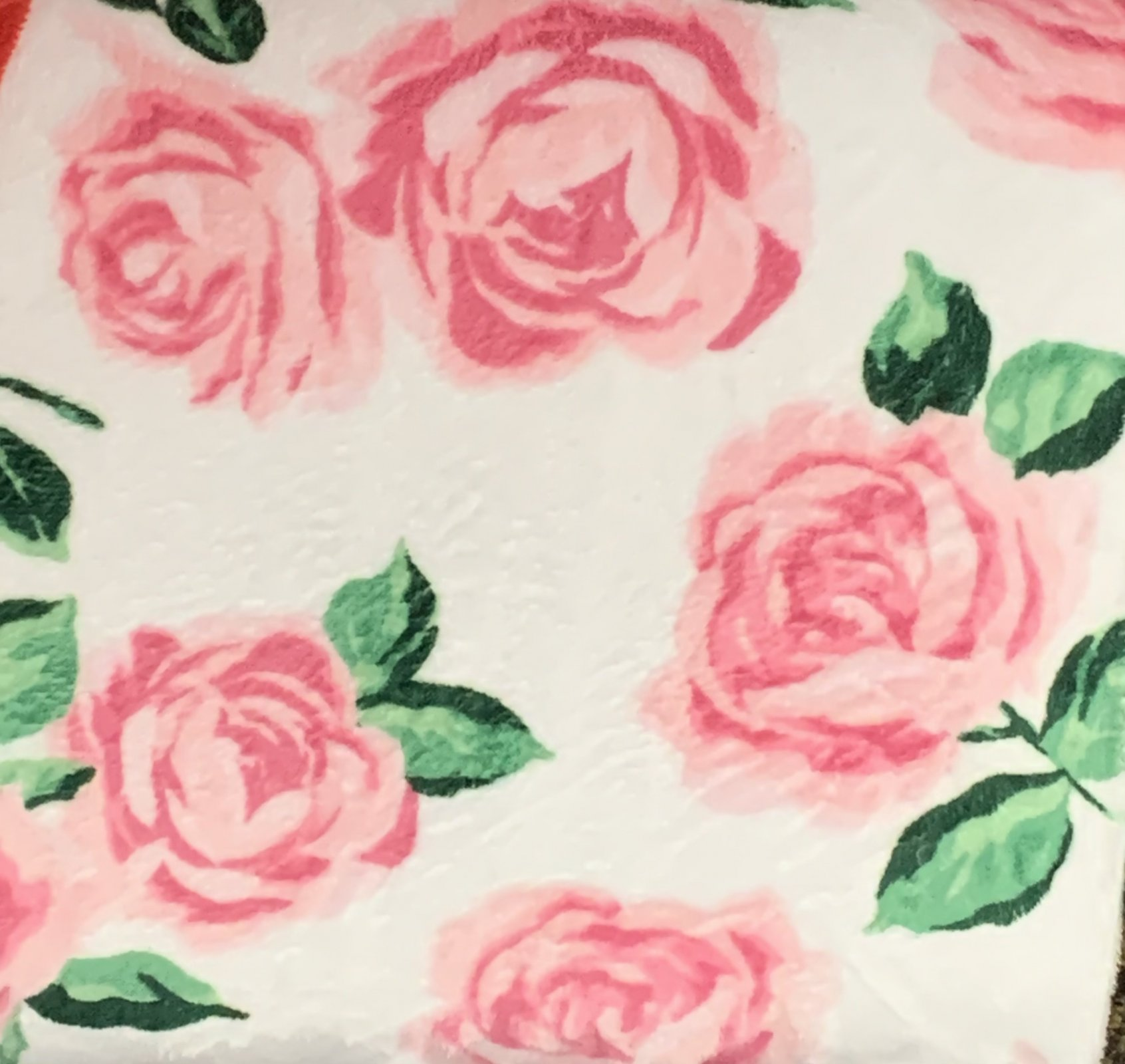 minky falling rose pink