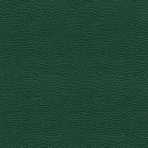 Forest Green Vinyl