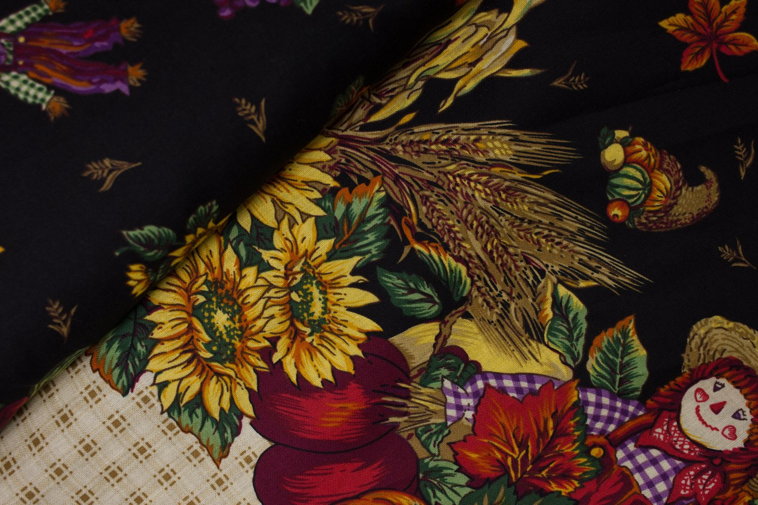 Secrets of Autumn Harvest BORDER Print on Black by Concord House