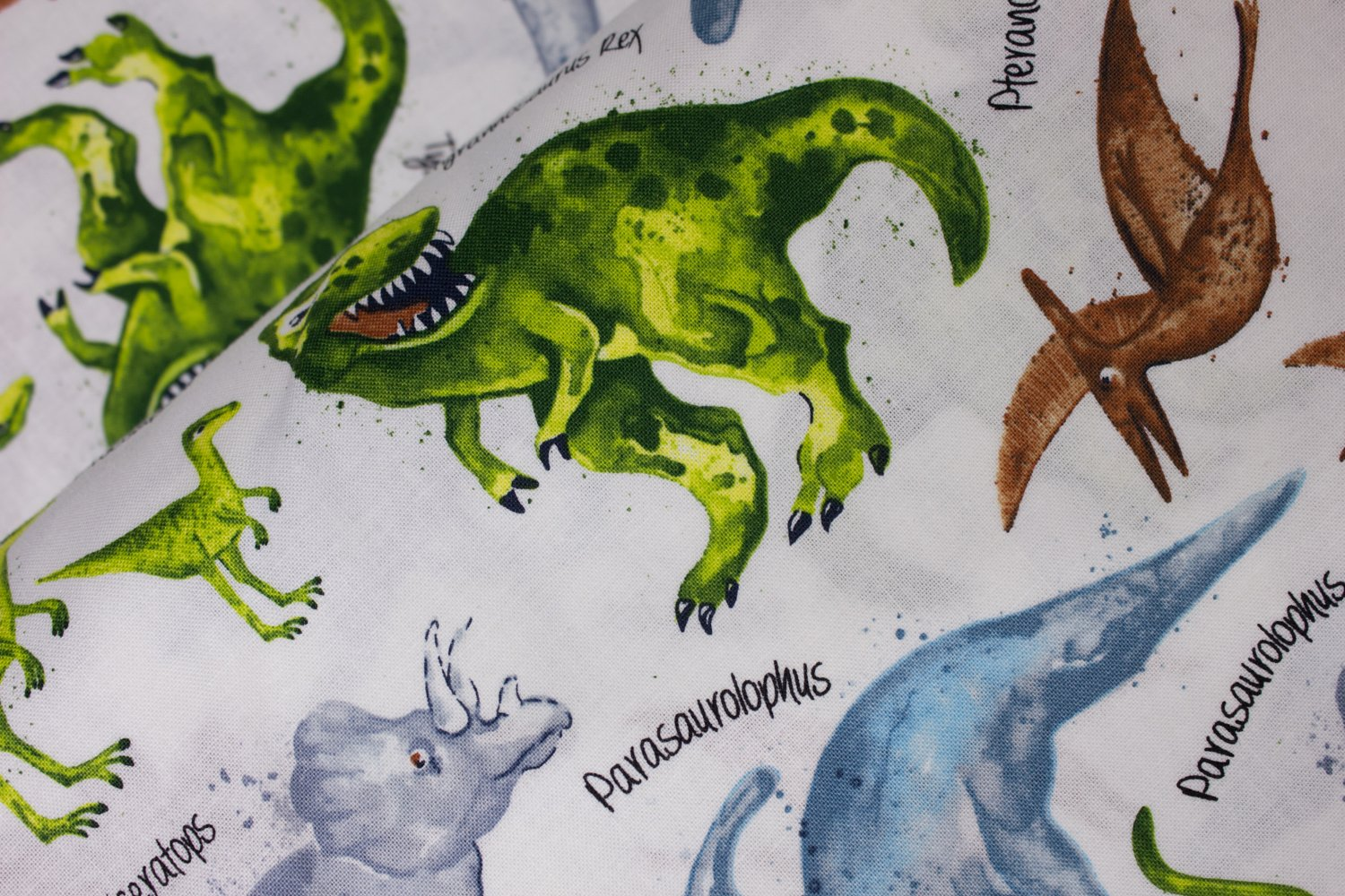 SPECIALTY FABRICS:  Dinosaurs and their Names on White:  Dino Trek by Timeless Treasures
