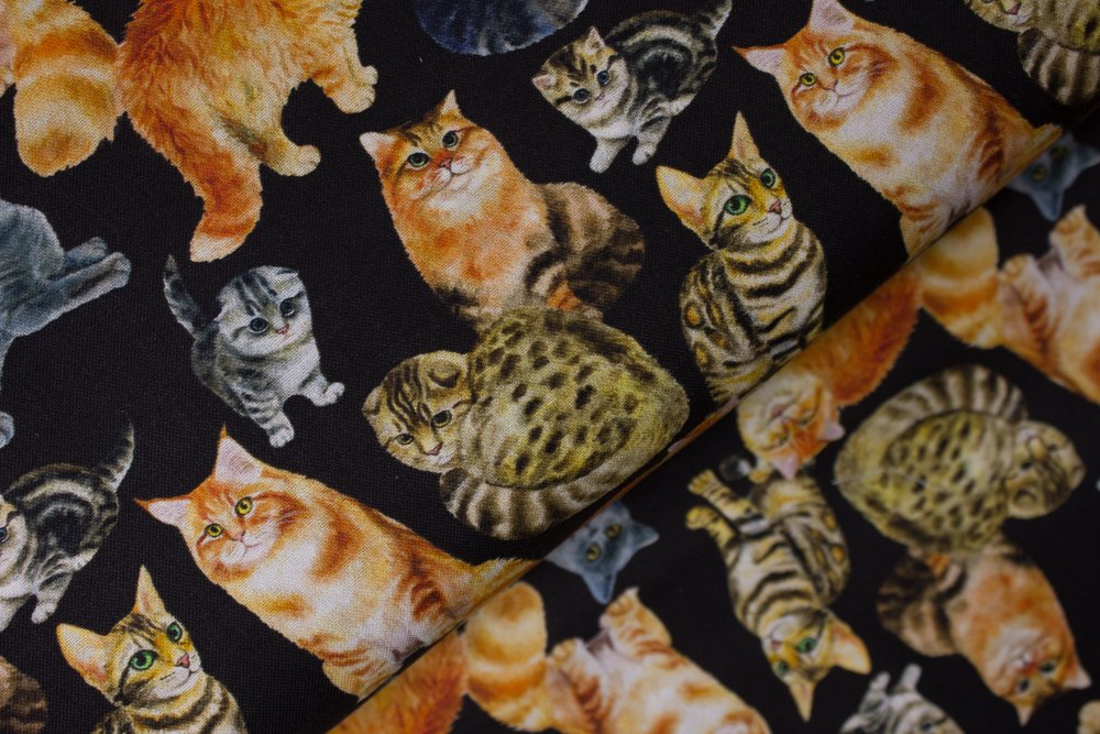 SPECIALTY FABRICS: Cats and Kittens on Black:  Kitty Kitty by MDG Digital