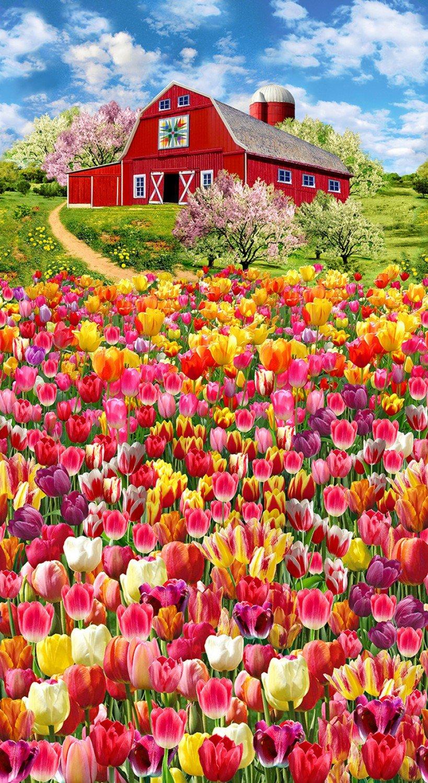 Tulip Farm Panel by Timeless Treasures