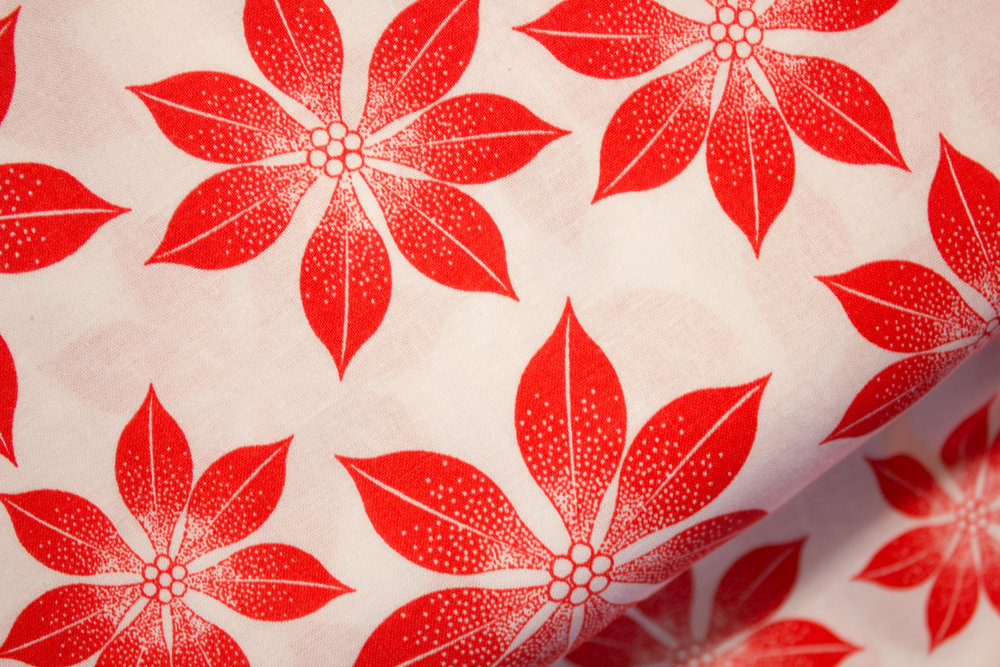 Red Poinsettia Leaves on White