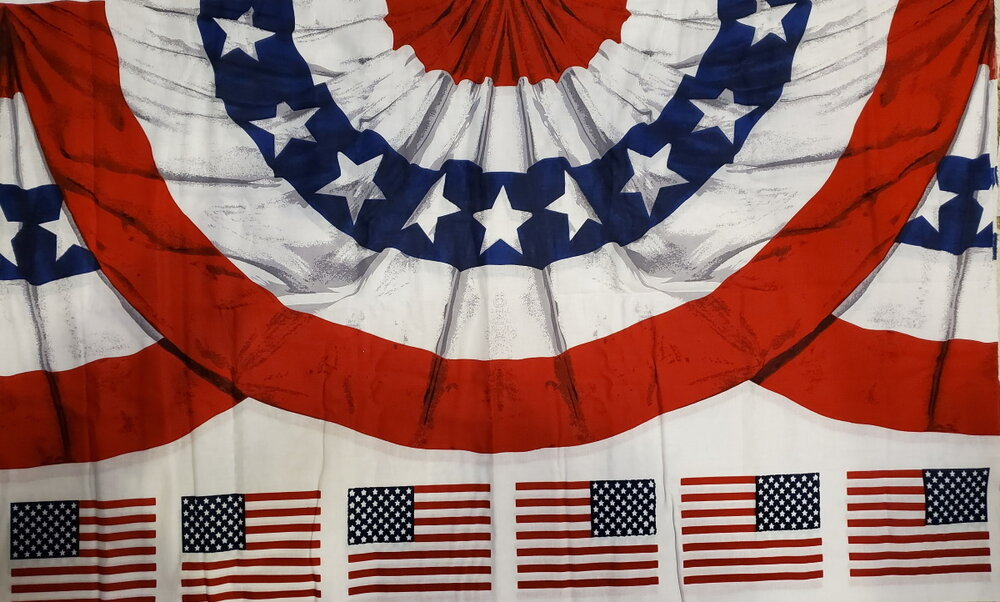 Americana Bunting Panel with Flags by Daisy Kingdom