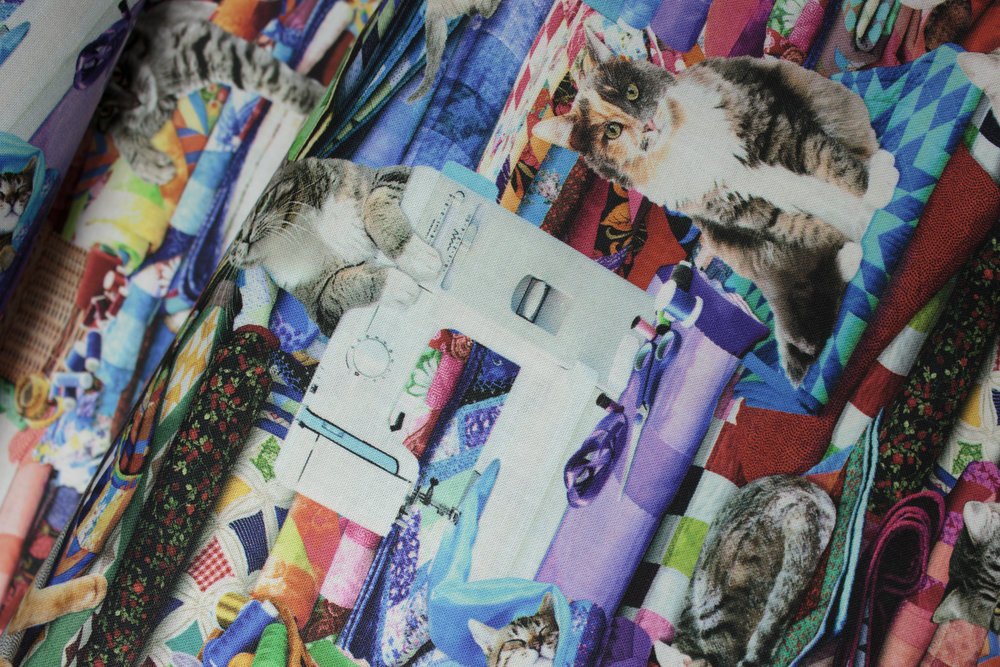 SPECIALTY FABRICS ROOM: Cats Doing Crazy Things - for Timeless Treasures