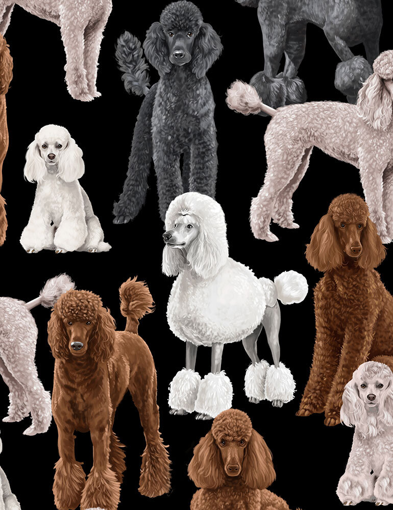 SPECIALTY Poodles on Black by Timeless Treasures