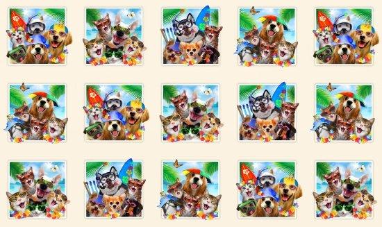 Cream Dog Selfies by  Howard Robinson for Elizabeth Studios