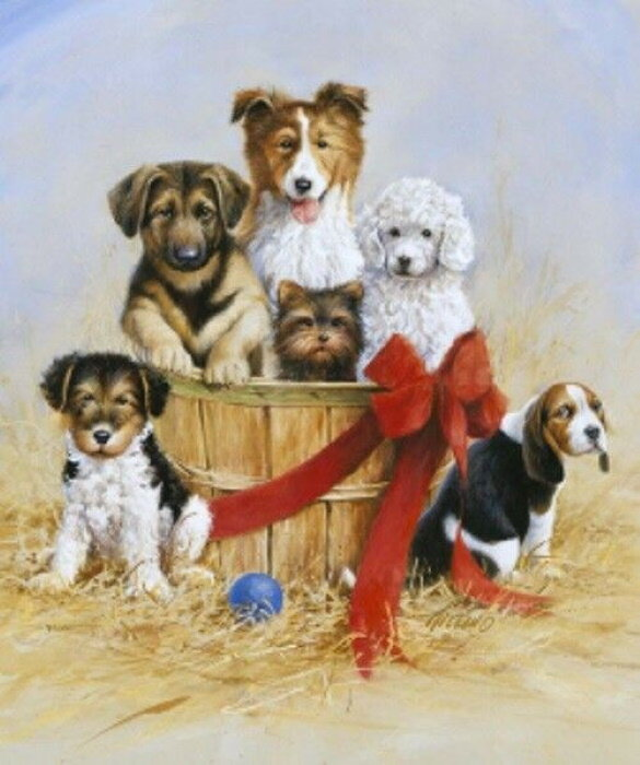 Wild and Playful - Puppies - Panel by Riley Blake
