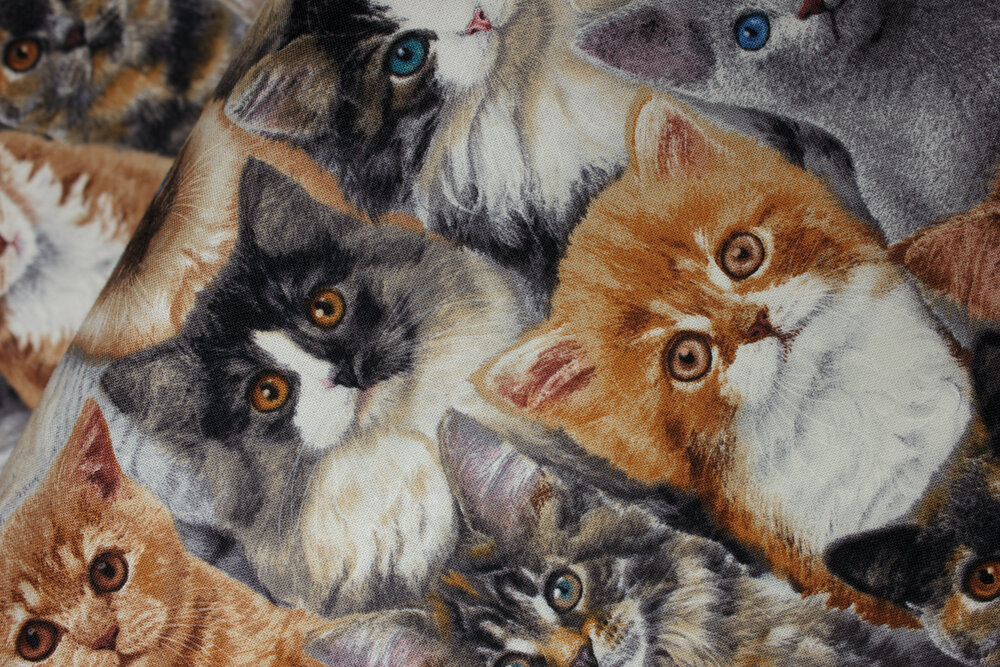 SPECIALTY FABRICS ROOM: Packed Cats: Adorable Pets by Elizabeth's Studios