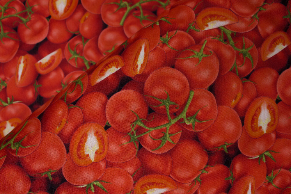 SPECIALTY FABRICS ROOM:  Packed Tomatoes: Food Festival for Elizabeth's Studio