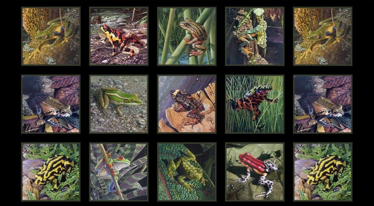 Amazing Frogs Quilt Panel by Carel Van Kempen for Elizabeth's Studios