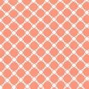 Creamsicle Peach Circles on White:  Spot On Wide by Studio RK for Robert Kaufman Fabrics
