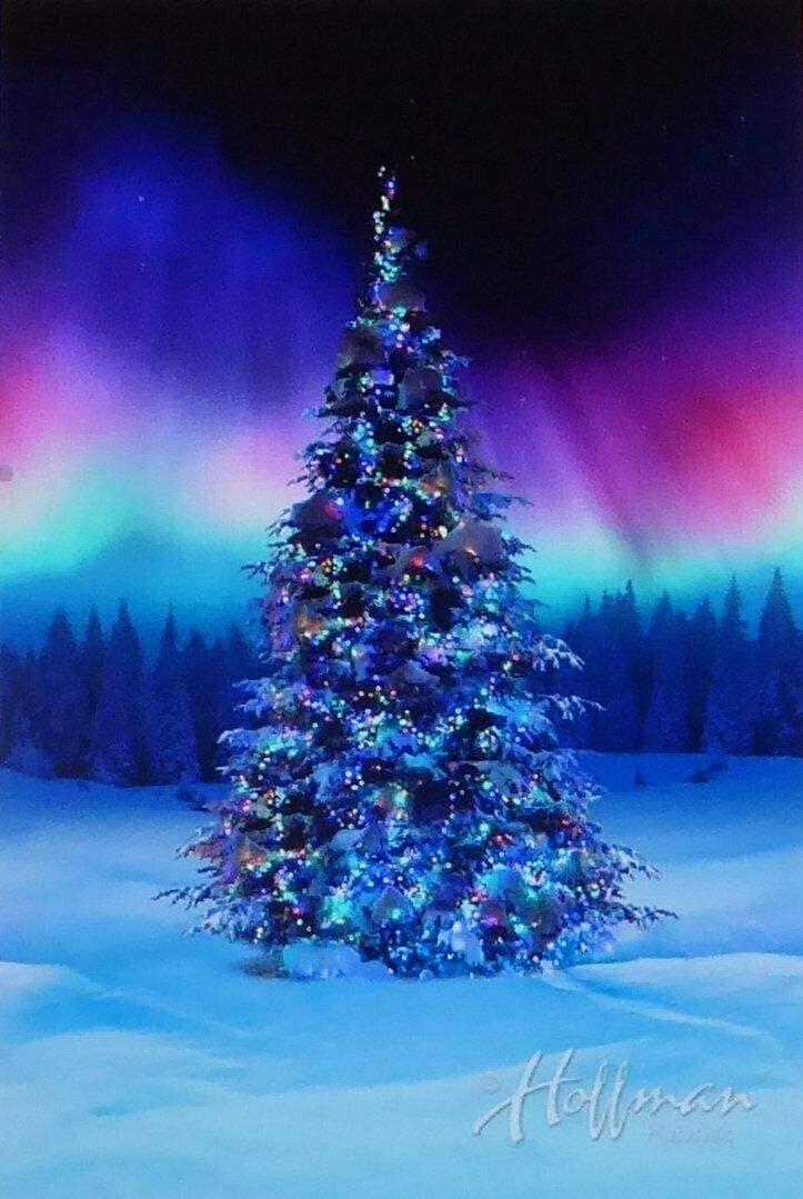 Borealis Christmas Tree All Aglow Digital Panel by Hoffman California