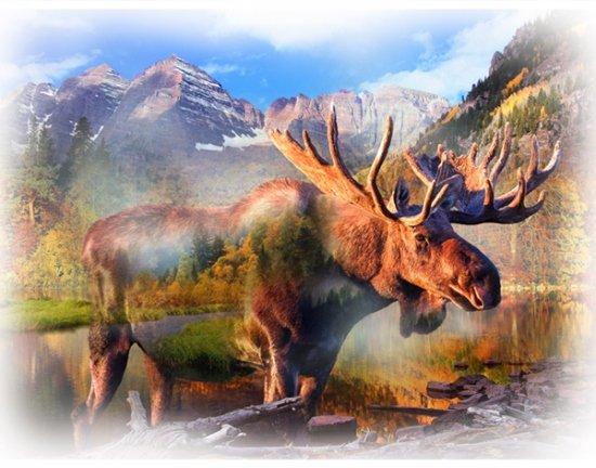 Moose in Umber Wilderness - Call of the Wild series by Hoffman Digital Prints
