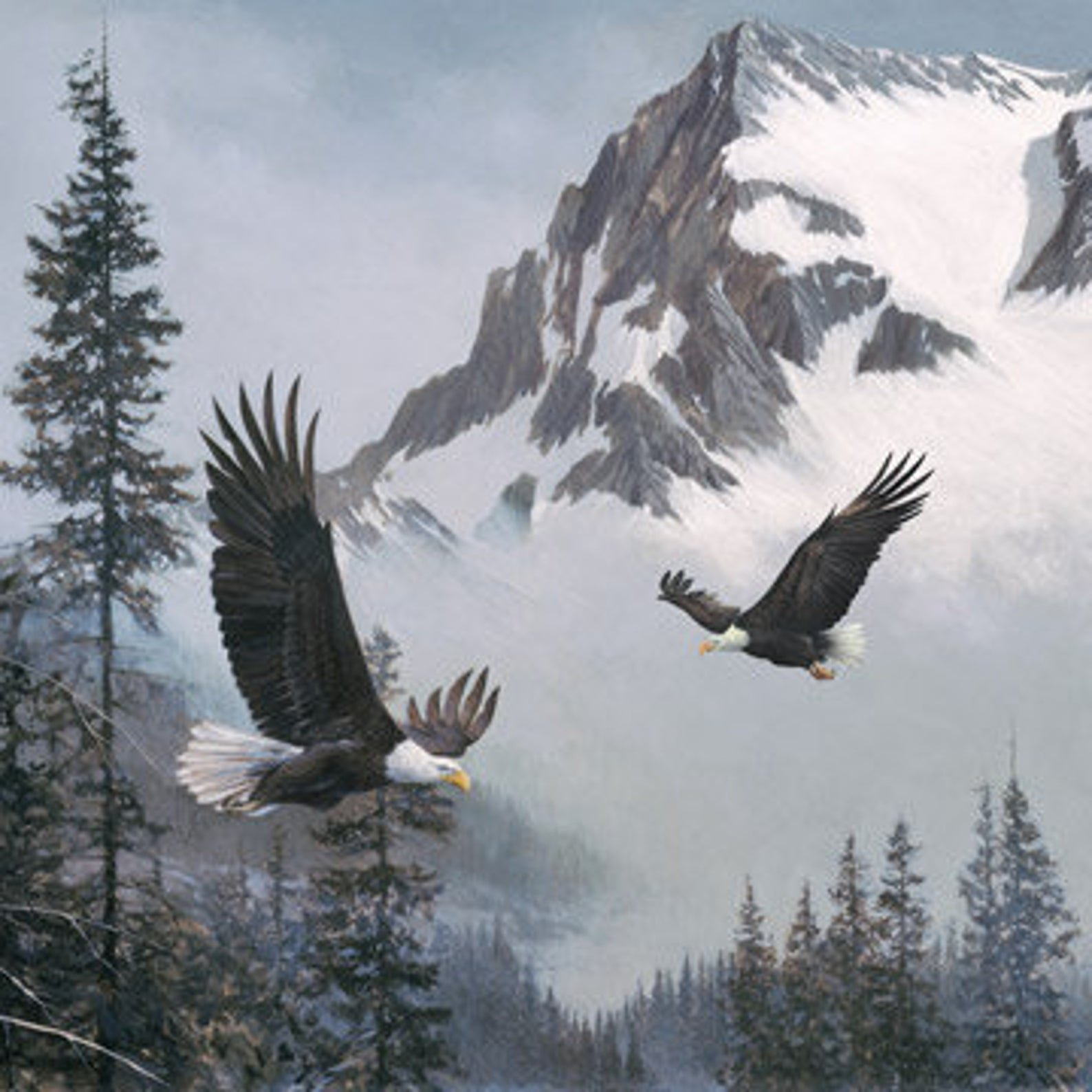 When Eagles Soar Quilt Panel - Naturescapes - by Northcott