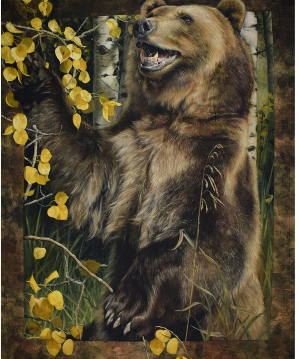 Wild and Playful Bear Quilt Panel by Riley Blake