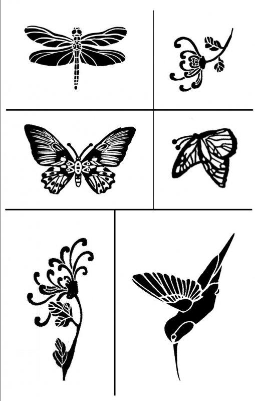 Flowers & Wings