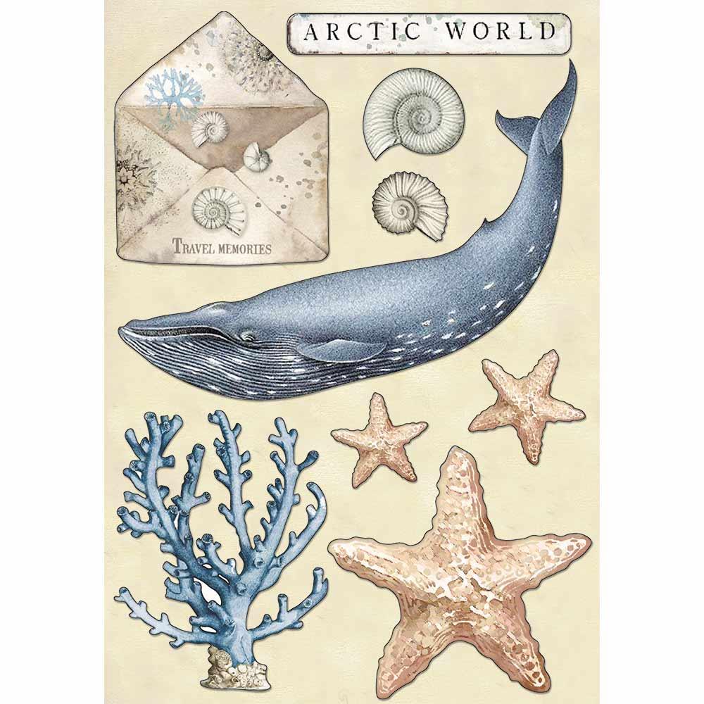 A5 Colored Wooden Shapes, Arctic Antarctic - Arctic World