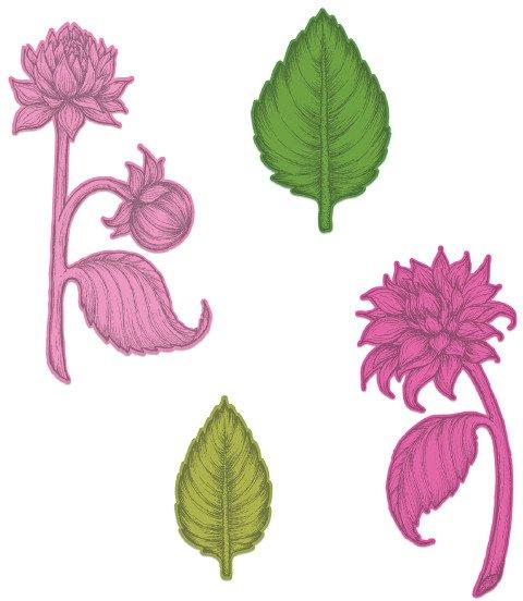 Die, Dahlia and Leaves