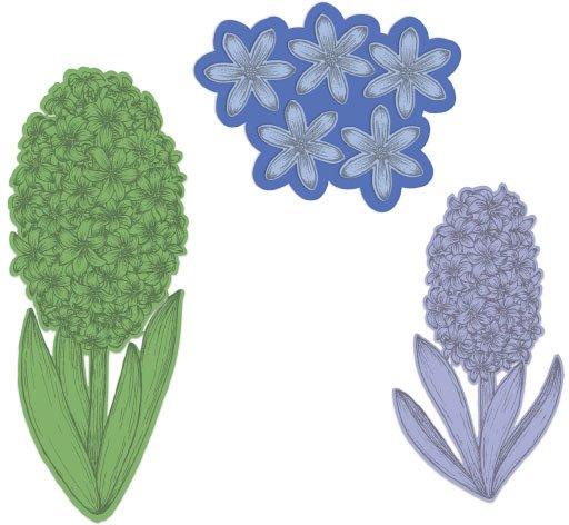 Die, Spring Garden - Fragrant Hyacinth