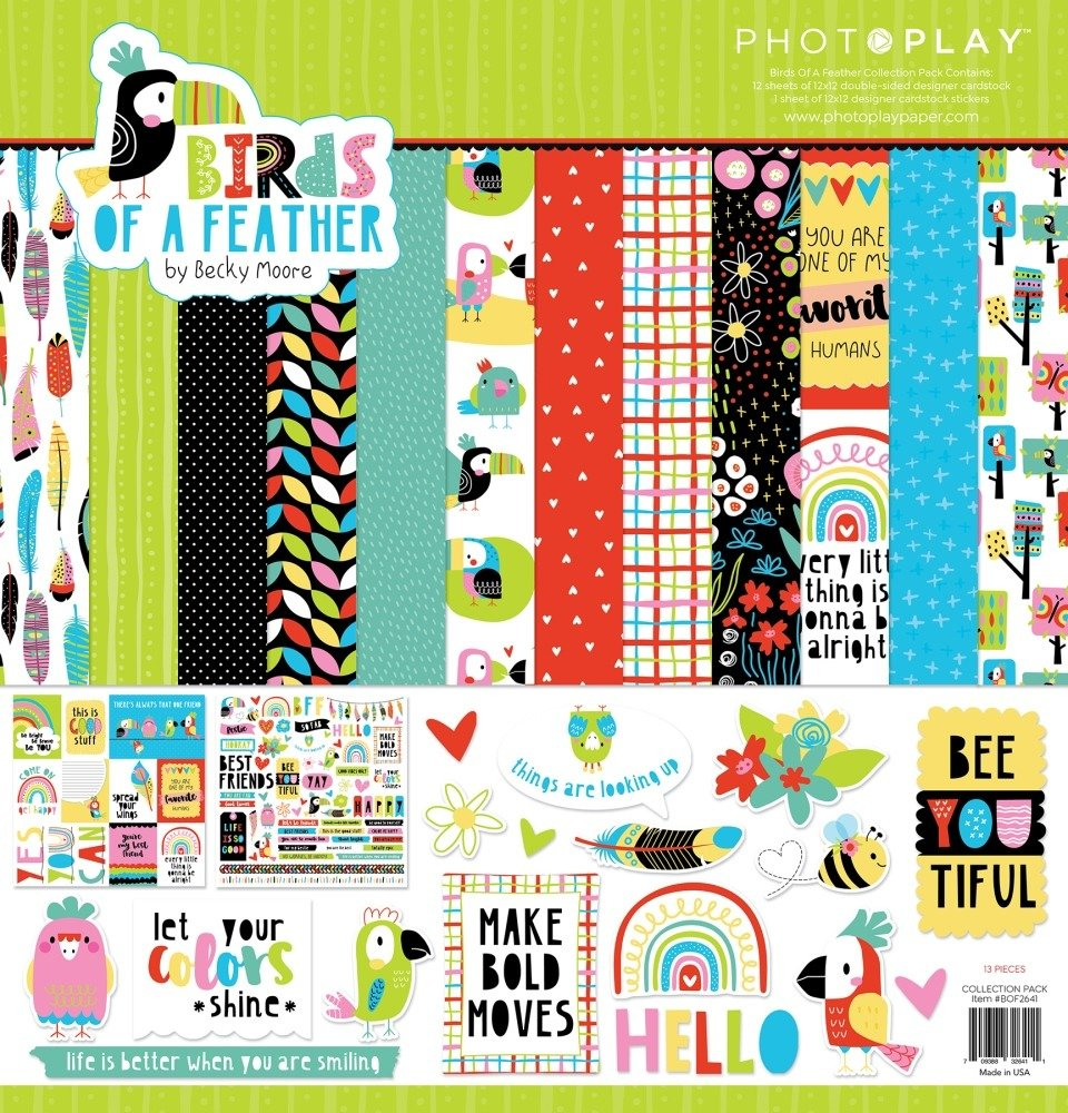 12X12 Collection Pack, Birds of a Feather