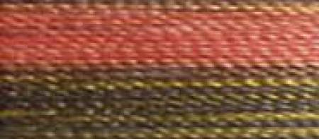 ROBISON ANTON SUPER STRENGTH RAYON VARIGATED EMBROIDERY THREAD-40WT-700YDS-AUTUMN-#2366