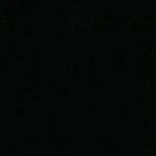 Black Satin Jacquard Woven
