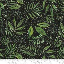breezy botanical black