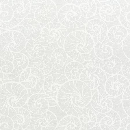 Whisper Shells - White/White