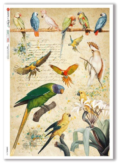 Rice Paper for Decoupage Tropical Birds
