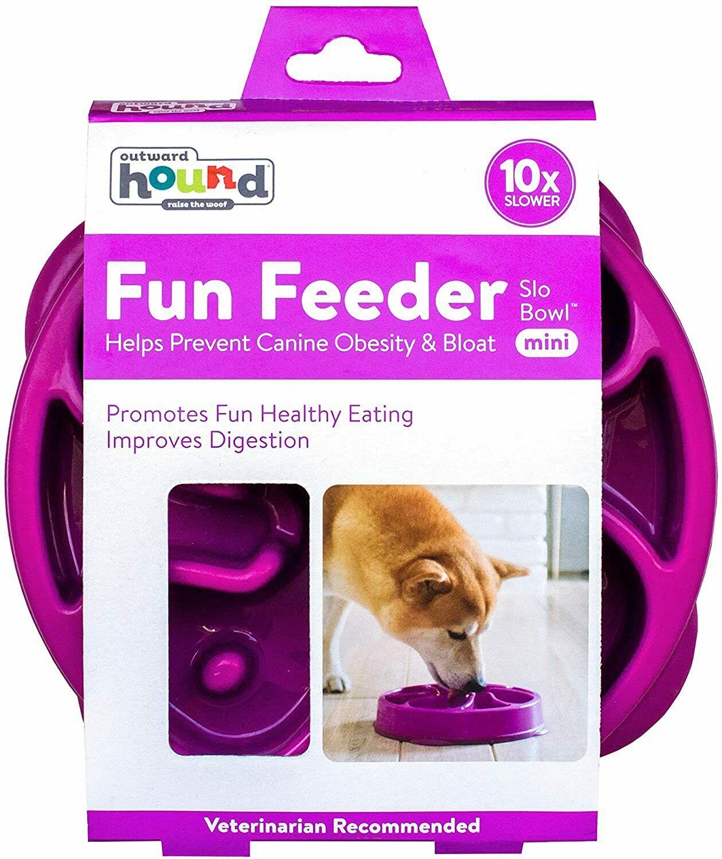 Outward Hound Fun Feeder Slow-Bowl for Dog Purple Color