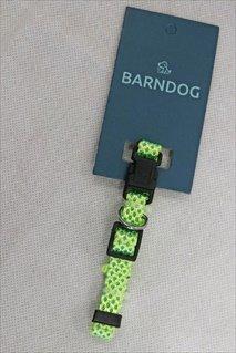 BarnDog 2 Tone Green Reflective Large
