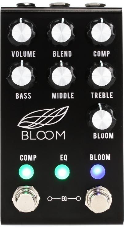 Jackson Audio Bloom
