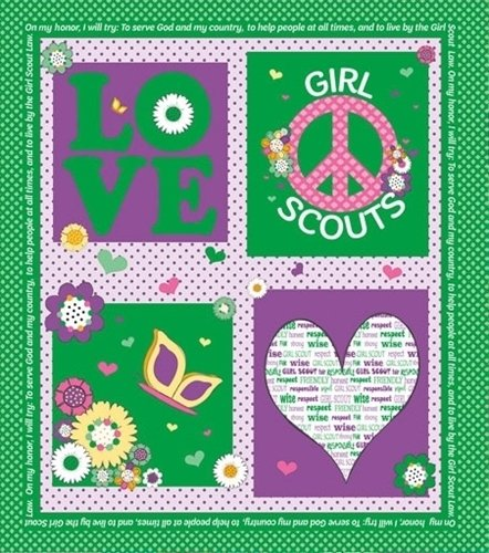 Girl Scouts Panel