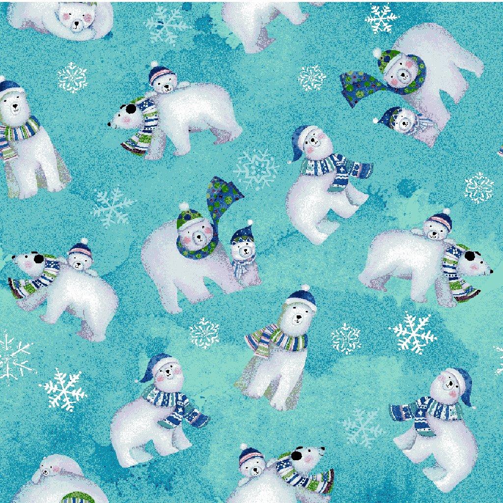 Snowville - Polar Bears / Aqua