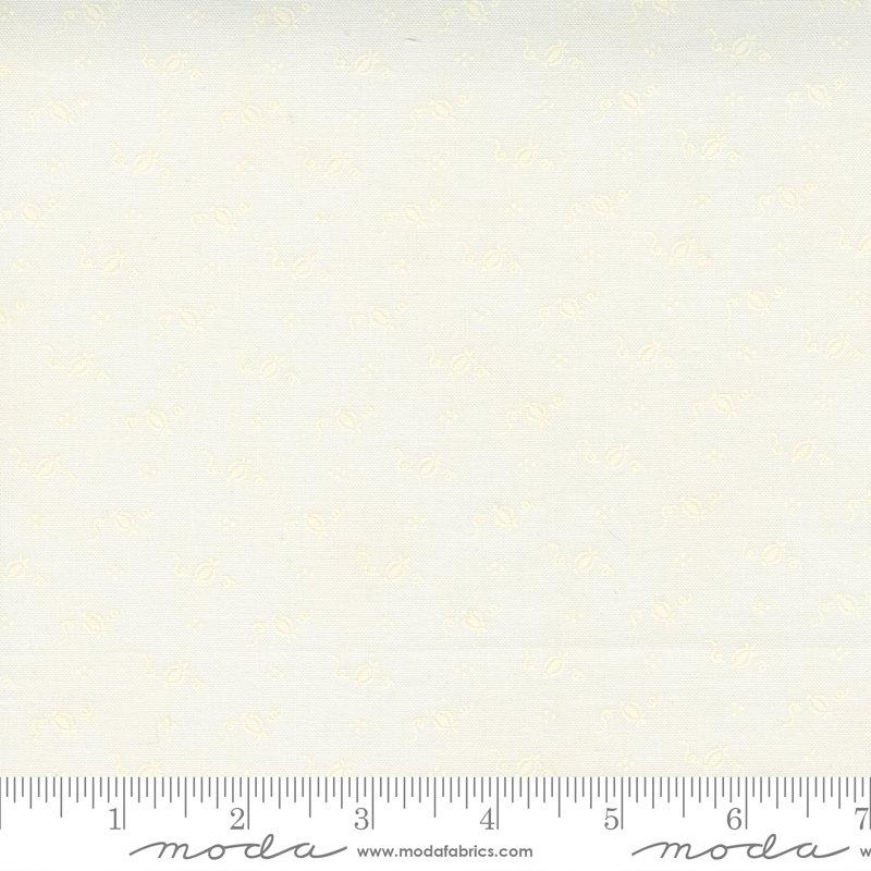 20427 21 MODA - PUMPKINS BLOSSOMS - VANILLA