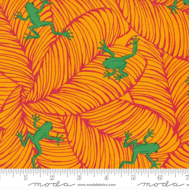 20786 14 - Moda Jungle Paradise Oh Froggy - Tiger