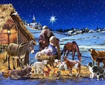 David Textiles/Art Licensing Nativity Panel