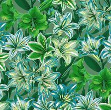 PWPJ104.GREEN Amaryllis